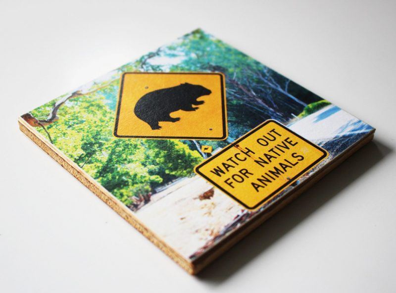 coaster_wood_Wombat_4529