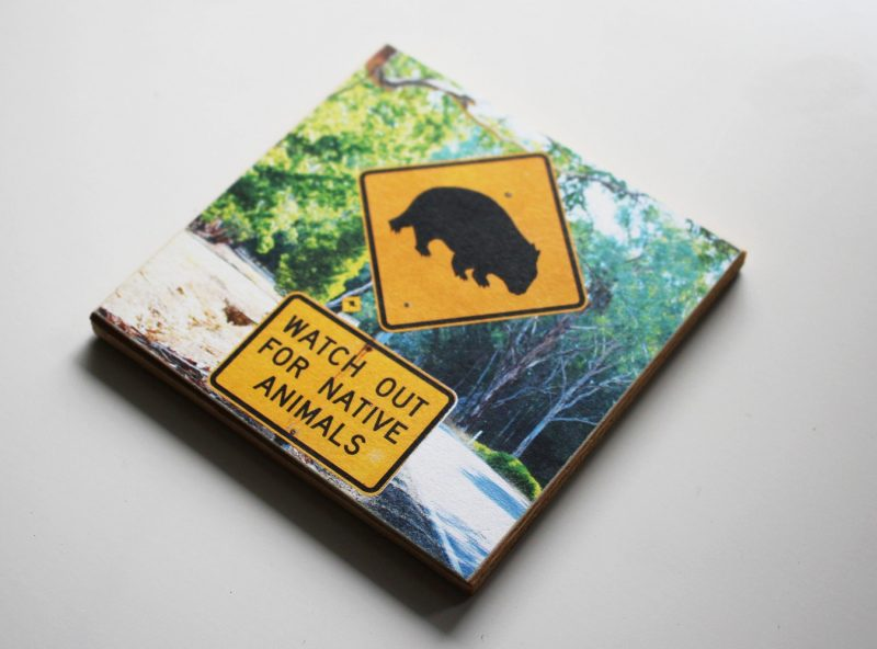 coaster_wood_Wombat_4531