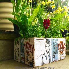 Graffiti planter box
