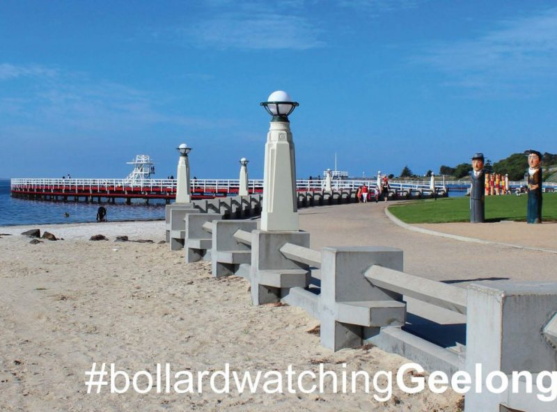 GreetingCards_Geelong_BollardWatching_MADproducts_A6 SizeFront