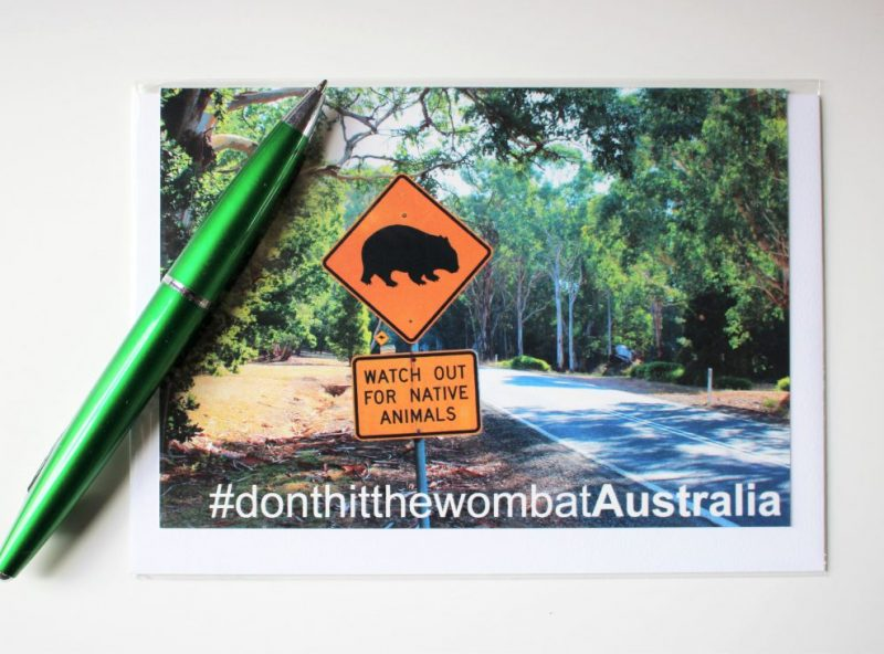 GreetingCards_Melbourne_Wombat_MADproducts_A6Internet